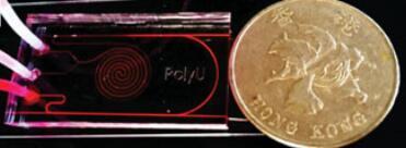 为超灵敏度葡萄糖检测而开发的微流控芯片