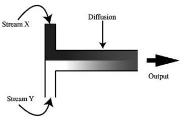 """图3:示意图显示了流体流X和Y彼此相邻的层流,由此发生的唯一混合是通过扩散。两股流的接触时间决定了发生混合的量。来自Beebe等人的图像""""物理学和微流体在生物学中的应用""""。"""