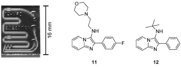 """用于合成G蛋白偶联受体调节化合物的微流控芯片。来自Rodrigues等人的图片 """"通过微流体系统获得新的化学实体。"""""""