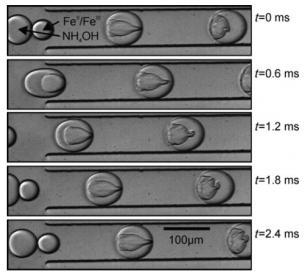 """显示通过氯化铁溶液液滴与氢氧化铵液滴在通道旁边的电极施加的电场的影响下形成氧化铁纳米颗粒的图像。来自Frenz等人的图片 """"用于合成磁性氧化铁纳米粒子的基于液滴的微反应器"""""""