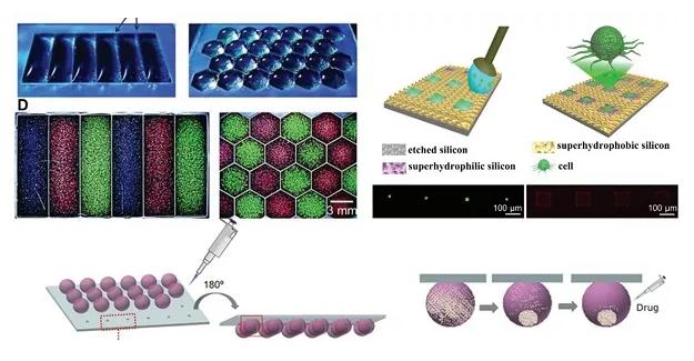 液滴微阵列在细胞方面的应用