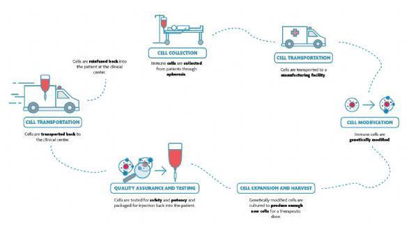 CAR-T细胞疗法流程图