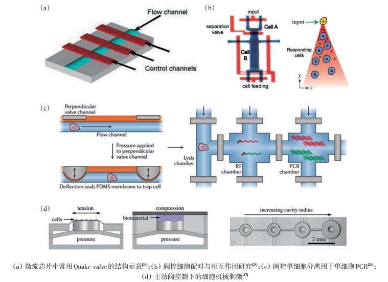 图2基于主动阀控制的细胞操纵