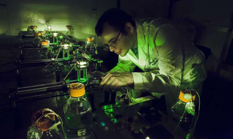 物理学研究生Jason Merritt在伊利诺伊州厄巴纳的Loomis物理实验室Kuehn实验室研究他的自动化细菌种群取样装置。来自伊利诺伊大学厄巴纳 - 香槟分校的L. Brian Stauffer