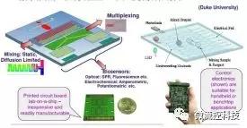 微流控芯片工作原理(图片来源:Duke University)