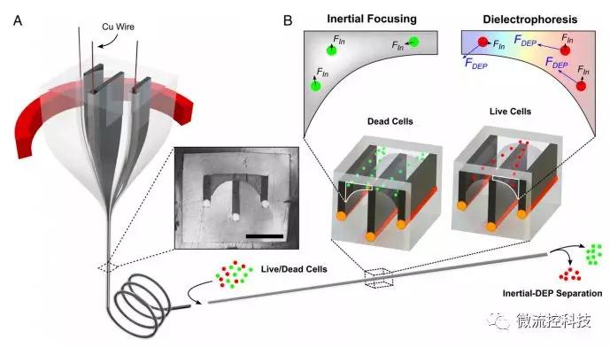 MIT 结构化多材料纤维微流控装置