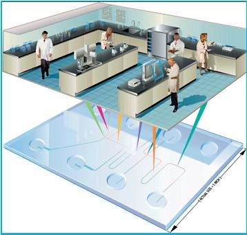 芯片实验室