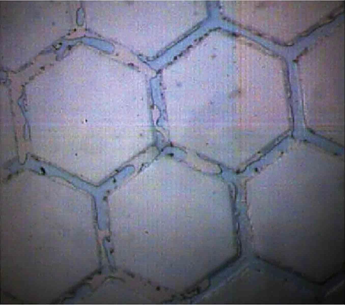 微流控芯片检测效果图